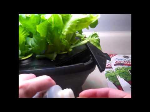 Miracle-Gro AeroGarden Bounty - Lettuce Garden How-To