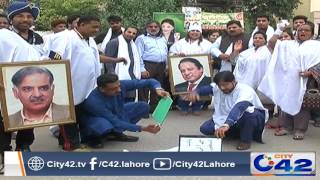 PML N workers protest against JIT report
