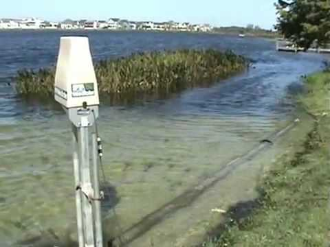 water weed solution - WEEDROLLER - for LAKE WEED BEACH CLEANING