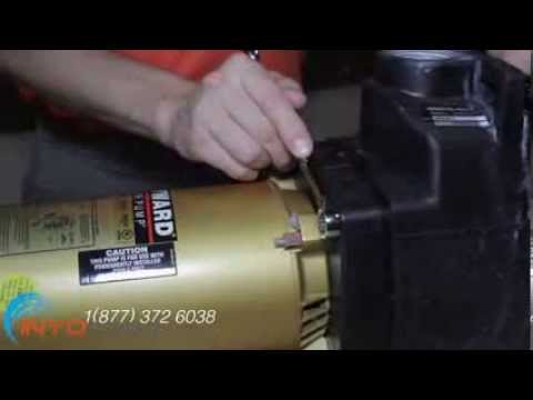 How To: Replace Pool Pump Gaskets