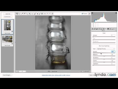 Processing multiple files in Camera Raw - Adobe Photoshop Essential