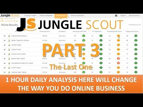 Jungle Scout Part 3 Niche Products Research. Most Useful & 100% Beneficial