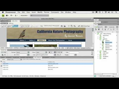 Adobe Dreamweaver  CS4 Essentials TESTING & PUBLISHING A WEBSITE  Testing & Fixing Links