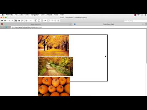 jQuery: Photo Zoom In/Zoom Out Effect using jQuery