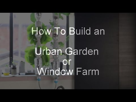 The best way to build self watering urban garden / window farm / bottle tower with airlift system