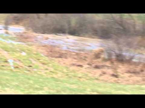 How to build a motocross track. Motocorss Track Soil Control.wmv