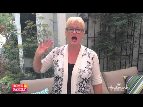 How to rid your house of lice w/ Dr. JJ!