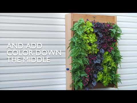 How to Create a Vertical Wall Garden