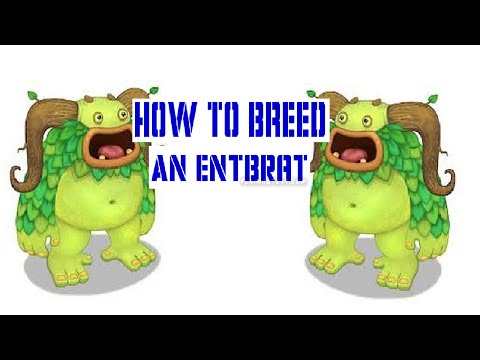 How to breed an Entbrat in My Singing Monsters! 100%