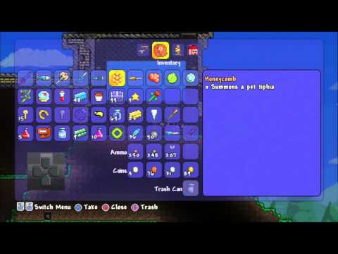 Terraria Showing Werewolf Pet Hornet Pet  Zombie Pet and Guinea Pig On PS3 HD