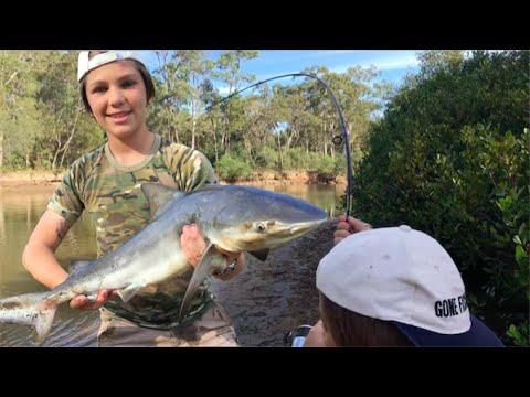 Shark Fishing and catching HUGE fish!