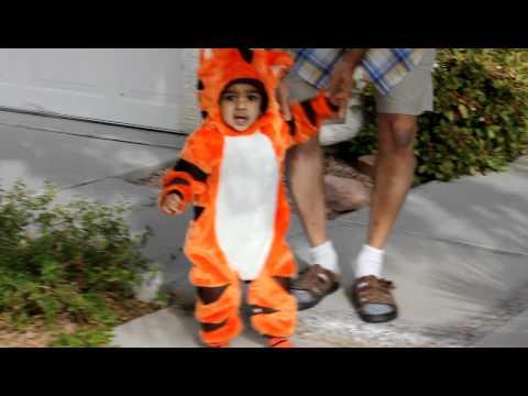 Ishaan's Halloween Tiger Costume