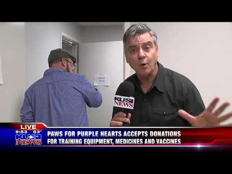 KUSI Good Morning San Diego Features Paws for Purple Hearts