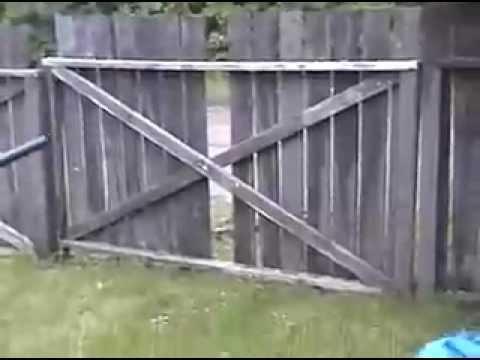 Potato Gun Fence Shot
