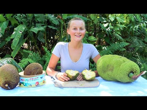 How To Tell When Jackfruit is Ripe PLUS 3 Fun Ways to Eat It!