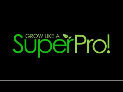 SuperCloset Review | How to Grow Hydroponics | Growing Tutorial