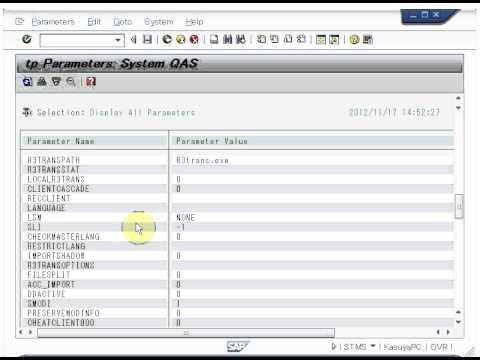 SAP Basis/NetWeaver - How to change TP parameters