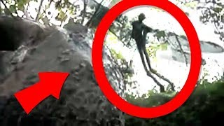 Top 10 Real Fairies Caught On Tape   10 Real Fairies Caught On Camera Real Part2