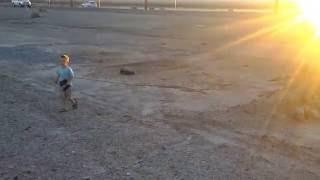 his little slash