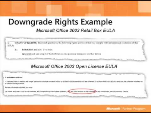 Downgrade rights example in EULA for Microsoft Office