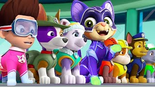 PAW Patrol Mighty Pups Charged Up - Skye,Chase Pups Ultimate Rescue Nick Jr HD