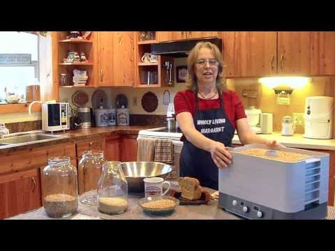 Soaking and Dehydrating Your Grains (Part 4)
