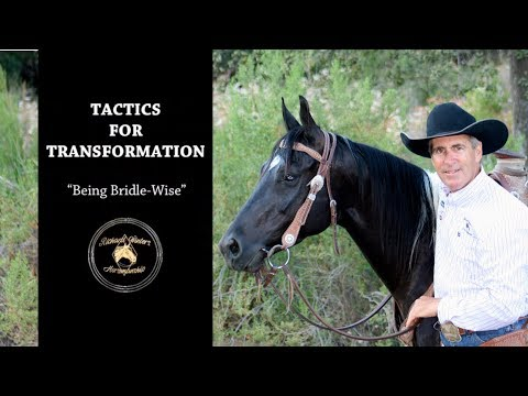 "Tactics For Transformation with Richard Winters & Weaver Leather - Being ""Bridle-Wise"""