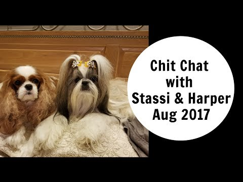 CHIT CHAT WITH STASSI AND HARPER