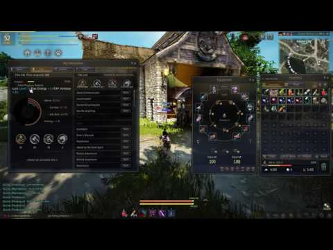 Black Desert Online: How to get 5 Attack, Cast, and Critical Hit Rate