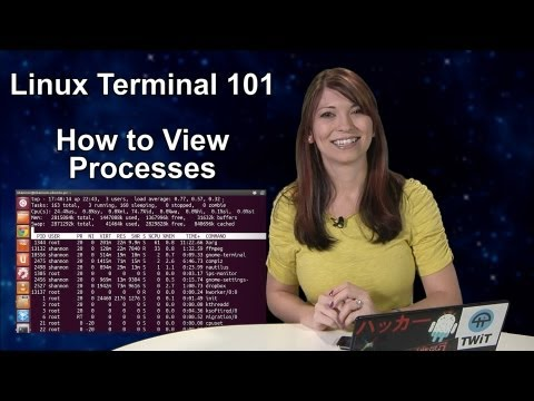 HakTip - Linux Terminal 101: How to View Processes
