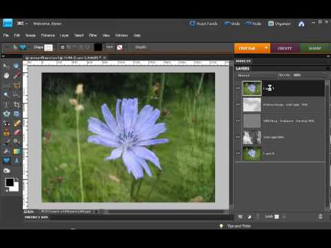 Photoshop Elements - Merge visible layers to a new layer