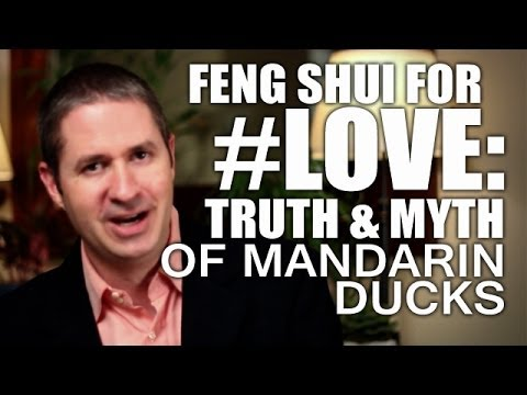 Feng Shui For Love, Relationship & Marriage: Truth & Myth of Mandarin Ducks & Your Love Life