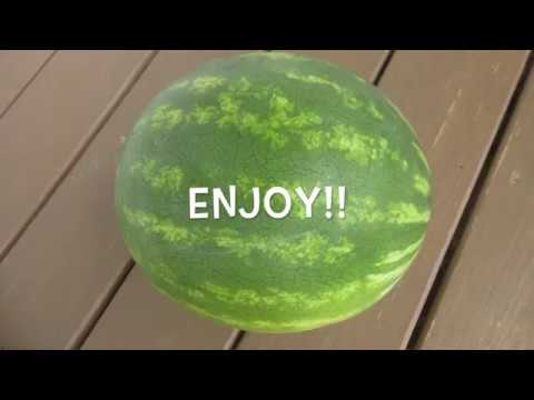 WATERMELON - How to slice WATERMELON the right way