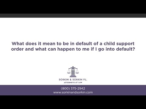 What does it mean to be in default of a child support order and what can happen to...