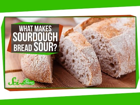 What Makes Sourdough Bread Sour?