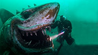 Shocking Discoveries Made by Deep Sea Divers