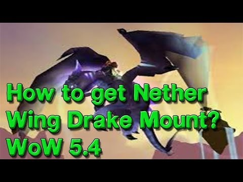 How to get Nether wing Drake Flying mount? WoW 5.4