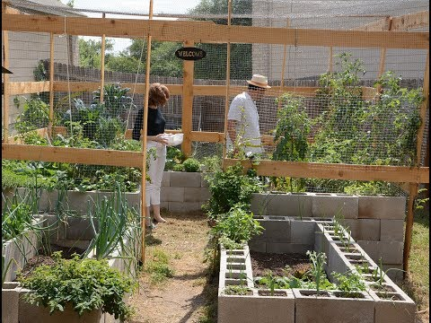 Cinder Block Vegetable Garden | Christine and Richard Alcorta |Central Texas Gardener
