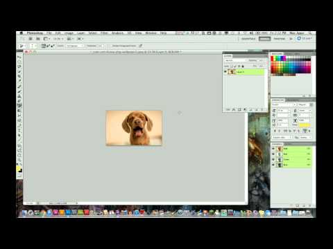 Photoshop CS5 Tutorial - How to Resize an Image
