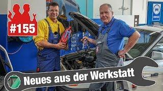 Golf-Zahnriemen kurz vor Motorschaden! 😳| Opel Astra California: Gebrauchte