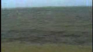 Islamic video firon