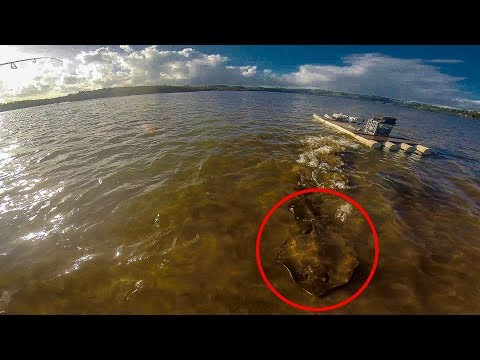 Charged by a HUGE Stingray While Fishing!!!