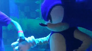 Sonic 25th ruined anniversary