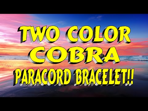 Two Color Cobra Braclet
