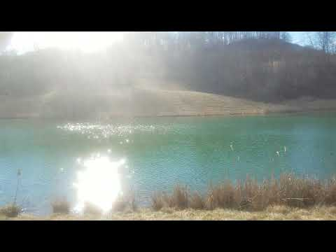 The Cabin at Whitetail Ridge 42 Acres For Sale in  Guernsey County