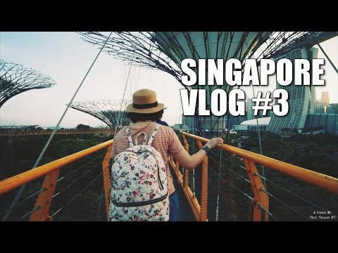 Garden By The Bay - Cloud Forest - Flower Dome - Supertree Grove | Singapore Vlog #3