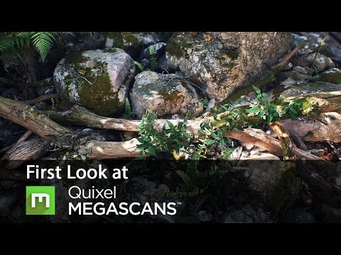 Basics of Quixel Megascans