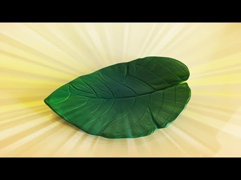 How To Make Concrete Decorative Leaf / DIY / Cement Leaf Shape Tutorial | Priti Sharma