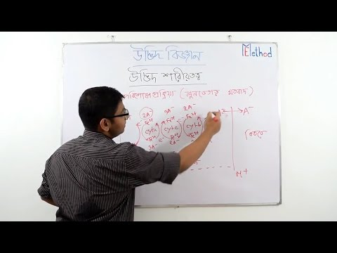 Lundegardth theory(Bengali)|Chapter 9|Biology-1|Class 11-12