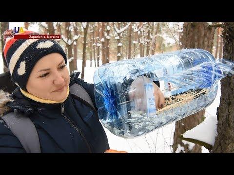Ukrainian Residents Help Wildlife Survive Bitter Cold Months With Homemade Birdfeeders
